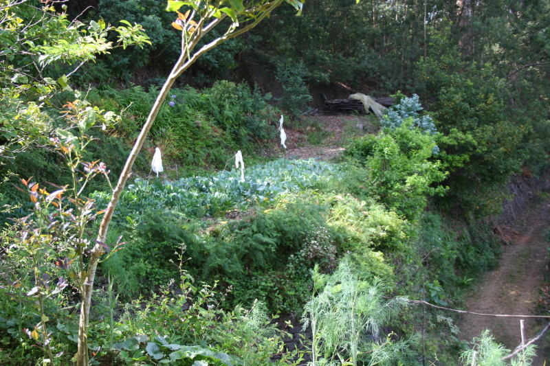 Quinta do Pomar 2